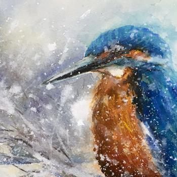 Eisvogel Winter Aquarell